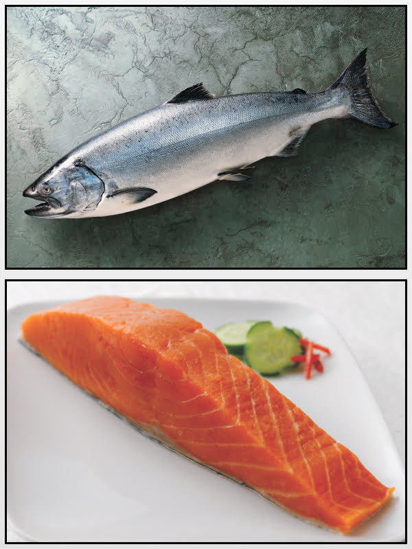 Salmone Reale Alaska Seafood