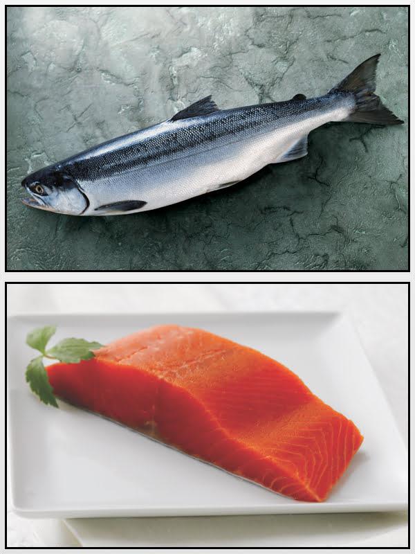 Salmone Rosso Alaska Seafood