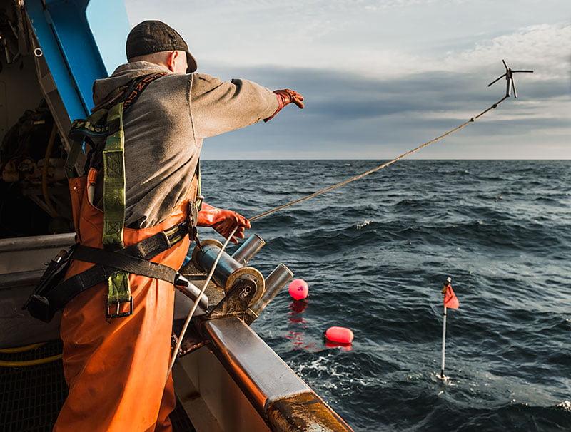 Pesca de palangre en acción
