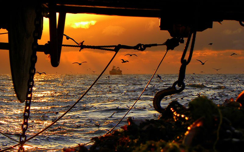Puesta de sol, pesca sostenible Alaska