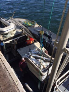 salmón recién pescado
