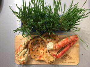 crab alaska