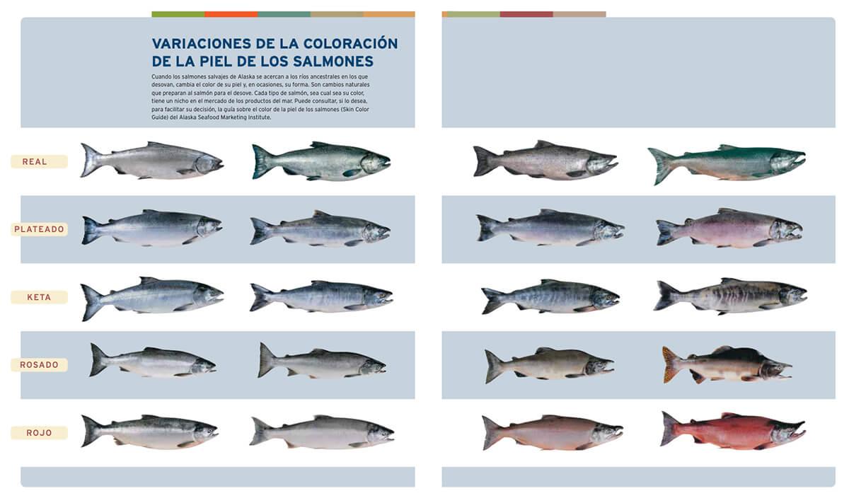 Variaciones de coloración de la piel de los salmones